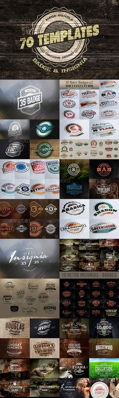 Logo / Badge / Insignia Templates Bundle - Badges & Stickers Web Elements