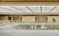 Gallery of York House Senior School / Acton Ostry Architects - 8