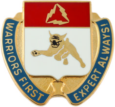 SPECIAL TROOPS BATTALION 1ST BRIGADE, 3RD INFANTRY DIVISION