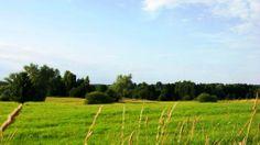 Działki Jakunówko, Mazury, Inwestycja w grunty, rodzinneinwestycje.pl Vineyard, Outdoor, Outdoors, Vineyard Vines, The Great Outdoors