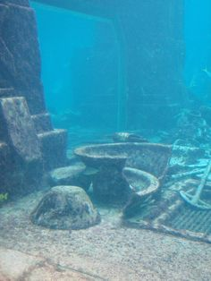 Lost City of Atlantis Archeological Dig, Nassau, Bahamas. i would love to have this at the bottom of my pool as deco.