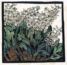 Australian Rock Lily, hand-colored woodcut by Margaret Preston, Australian artist Henri De Toulouse Lautrec, Australian Painters, Australian Artists, Gallery Of Modern Art, Art Gallery, Margaret Preston, Linocut Prints, Art Prints, Gustav Klimt