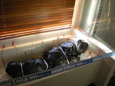 Bathroom fake corpse garbage bags full of scrunched up newspaper shaped like a body, sauce for blood #halloween #decorations #party