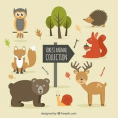 Forest animals free vector