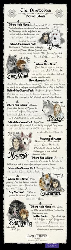 Everything You Need to Know About the Direwolves of House Stark
