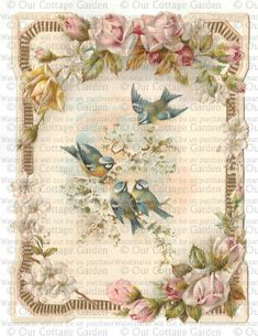 antique  and vintage .victorian cards | Victorian Card * Winter BIRDS & Roses | Our Cottage Garden