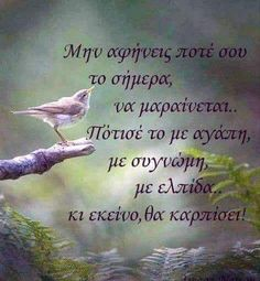 Greek Quotes, Picture Quotes, Life Lessons, Wise Words, Literature, Motivational Quotes, Letters, Pictures, Inspiration