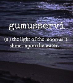 gumusservi [Turkish] ~ (n.) the light of the moon as it shines upon the water. ☽