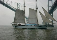 sailing under the Chesapeake Bay Bridges