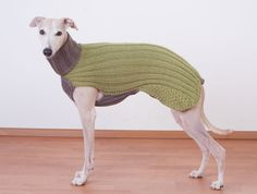 Welcome to turtleneck weather. #etsypets