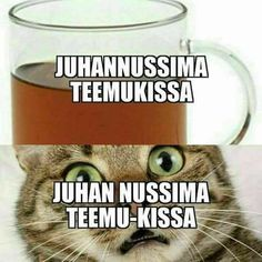 Katso kuva tästä! Naurunappula tarjoaa hauskimmat kuvat, videot ja linkit - joka päivä jotain uutta. Funny Meems, Finnish Language, Sweet Memes, Funny Pick, Dark Memes, Sarcastic Humor, Mood Quotes, Puns, Finland