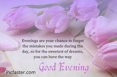 Good Evening Love, Good Evening Photos, Good Evening Messages, Good Evening Wishes, Evening Pictures, Sorry Images, Thank You Images, Evening Quotes, Festival Image