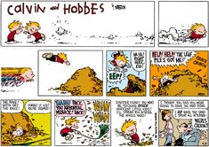 Calvin and Hobbes, I thought you said you were going to rake the yard.
