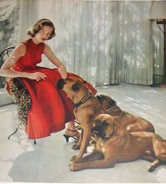 Lauren Bacall and her boxer dogs.