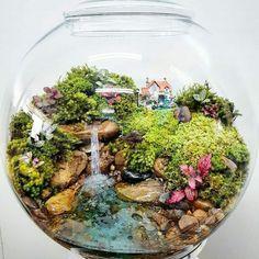 This fairy garden terrarium is so beautiful! Mini Terrarium, Terrarium Scene, Fairy Terrarium, Terrarium Plants, Terrarium Ideas, Mini Fairy Garden, Fairy Garden Houses, Fairies Garden, Paludarium