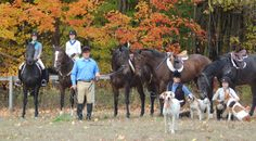 New Vocations Forms Partnership With Student Riding Program Gallop On