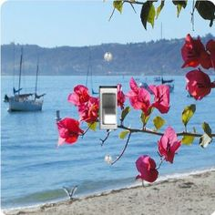 """Rikki KnightTM Beach Scenery with Pink flowers - Single Toggle Light Switch Cover by Rikki Knight. $13.99. Washable. 5""""x 5""""x 0.18"""". Masonite Hardboard Material. For use on Walls (screws not included). Glossy Finish. The Beach Scenery with Pink flowers single toggle light switch cover is made of commercial vibrant quality masonite Hardboard that is cut into 5"""" Square with 1'8"""" thick material. The Beautiful Art Photo Reproduction is printed directly into the switch plate and no..."""