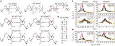 Chemical exchange in dG[bull]dT mispairs.