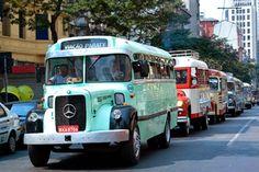 """Esses ônibus parecem-nos velhos lotações, mas eles tinham apelido de """"jardineiras"""". Não eram como os """"jardineiras"""" que conhecemos hoje, mas fizeram história. E um desfile desses carros, em 2007, foi registrado em foto publicada pelo site do Sindicato de Transportes de Passageiros do Estado de São Paulo. À frente, um exemplar que circulou na frota da Viação Paraty."""
