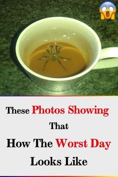 These Photos Showing That How The Worst Day Looks Like Funny Jokes, Hilarious, Worst Day, Cheer Me Up, Picture Story, Weird Stories, Weird Pictures, Weird And Wonderful, Raw Materials