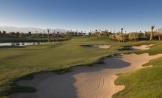 17th green Royal Palm Golf Course, challenging Par 3