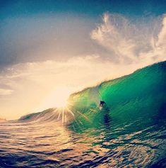 Best surf blogs | Mushburger.com Surf Blog CollectiveMushburger