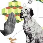 Boost Your Dog IQ   The Bark