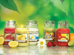 Yankee Candle heaven! Pink Dragonfruit, Sicilian Lemon, Love's me, Loves me Not, Wild Passion Fruit, Fruit Fusion.