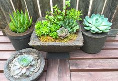 The beauty of succulents is made more stunning with your own DIY hypertufa concrete container. Learn how to make these super easy hypertufa containers mixing Portland cement, perlite and sphagnum peat moss. See the simple tutorial on The Home Depot's Garden Club.