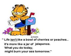Garfield Quotes About Mornings images