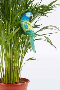 Urban Grow Bird in Yellow