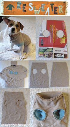 Reutilize um blusão velho para fazer uma roupinha de cachorro