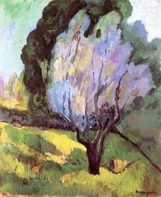 Saint-Tropez, A Flowering Tree / Henri Manguin - 1905