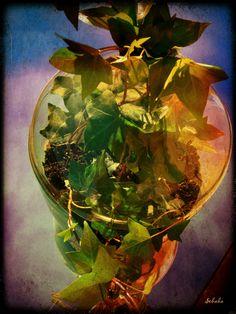 """Oranżeria w balonie po winie """"...z potrzeby serca i ku radości sprawnych dłoni..."""""""