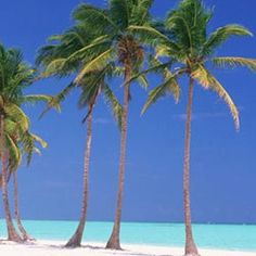 Punta Cana, Dominican Republic. LOVE!  ... someday, a warm beach, clear blue waters and the love of my life for 28+ years.  Lets celebrate our anniversary HERE.