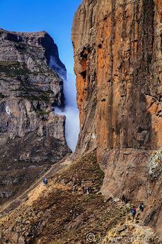 My Favorite Hike Ever: Amphitheatre Trail Her World, Hiking Trails, South Africa, Grand Canyon, Outdoors, Travel, Xmas, Viajes, Destinations