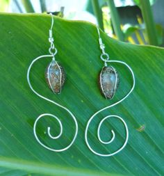 Dangle Hawaiian Cowrie Shell Spiral Earring by KealaCreations, $15.00