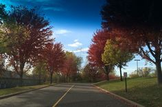 What a beautiful fall day that was.🍁🍂🍃