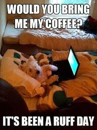 Would you bring me my coffee? It's been a ruff day.