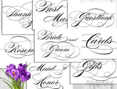 Wedding Reception Cards Combo Pack Printable 5x7 by StickyStick, $25.00