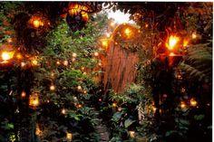 Candlelit Woodland