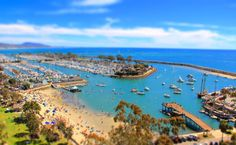 Tips for Visiting Dana Point, California, with Kids