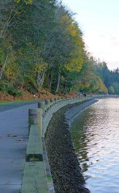 Point Defiance walk | Owen beach Tacoma, Washington