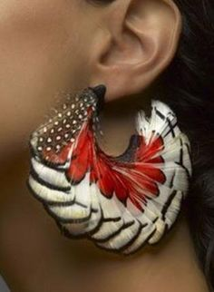 Limited Edition Feather Earrings $66