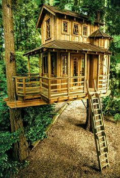 his new book be in a treehouse arboreal architect pete nelson of animal planets treehouse masters takes backyard play to beautiful new heights