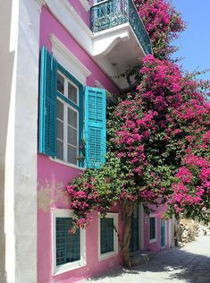 Buy or license direct from the photographer this stunning image of : Dark Pink House , Blue Shutters , Dark Pink Bougainvillea Flowers , Cobblestone . Nassau, Exuma Bahamas, Jamaica, Barbados, Bahamas Honeymoon, Caribbean Homes, Blue Shutters, Pink Houses, Colorful Houses