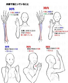 Various anatomy tips for different body parts. I feel like im gonna become a doctor with all these anatomic parts in drawing process lol ❗I don't own these pictures! If you're an owner or have credits dm me! Arm Anatomy, Body Anatomy, Anatomy Art, Hand Drawing Reference, Anatomy Reference, Art Reference Poses, Tutorial Draw, Anatomy Tutorial, Anatomy Sketches
