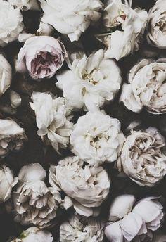 CLOSETWHITE Blog www.closetwhite.com Instagram: @closet_white