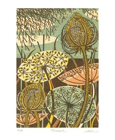 Teasel - wood engraving print by Angie Lewin - printmaker. Nice use of brown as primary print colour. Angie Lewin, Art And Illustration, Gravure Photo, Illustration Botanique, 1 Tattoo, Wood Engraving, Linocut Prints, Woodblock Print, Botanical Art