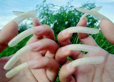 Nails Only, Love Nails, Long Natural Nails, Curved Nails, Long Fingernails, Exotic Nails, Super Nails, Healthy Nails, Nail Care